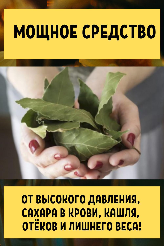 Этот лист — невероятно мощное средство от высокого давления, сахара в крови, кашля, отёков и лишнего веса!